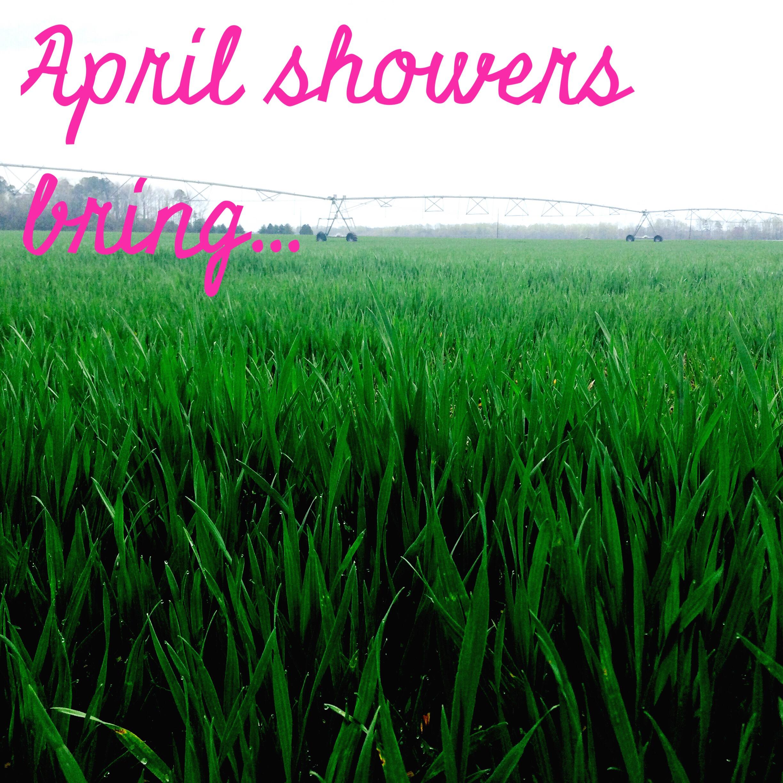 April Showers Bring… – The Good Stuff
