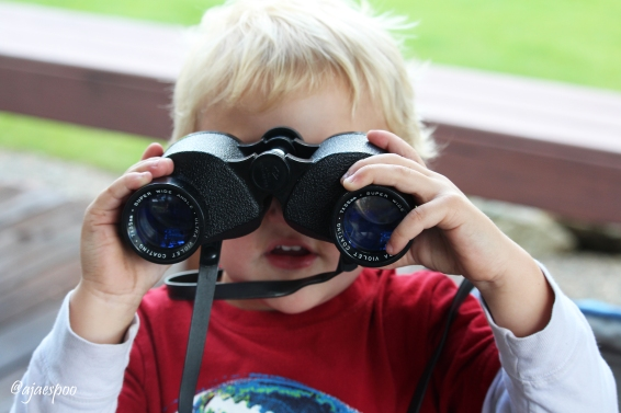 "When Bodie saw me bring out my camera, he says ""hold on, I'll get one of those too."" And out he came with our great-great Grandpa Williams' binoculars and then followed me around for most of the afternoon."