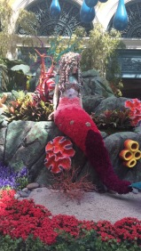 At the Bellagio...of course Janci and I can't help pricing out the flowers.