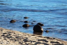 Lake Taho - 2015 - namemark 11