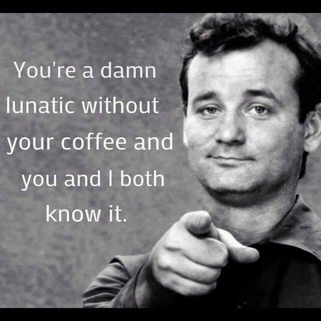 bill murray meme