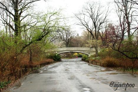Central Park - EDITED NAMEMARK