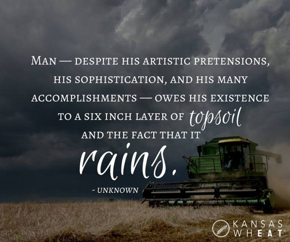 perspective - rain