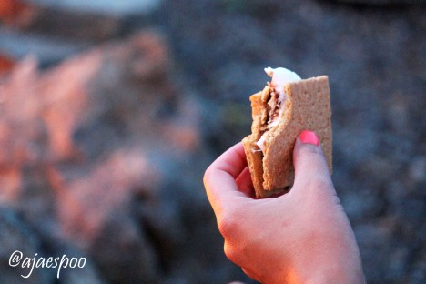 smores with namemark