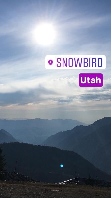 The summit at Snowbird, UT