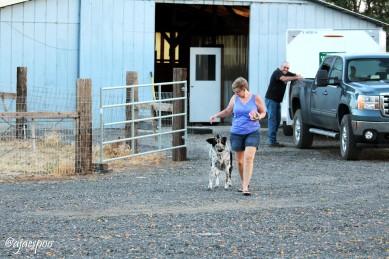 JUN18 - Summer on the Farm - Mom and Dad (2) NAMEMARK