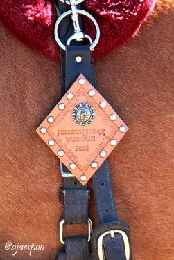 JUN18 - Wagon Train (111) NAMEMARK